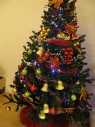 クリスマスツリーを飾ったよ!