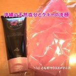 沖縄の泥洗顔 美シーサー