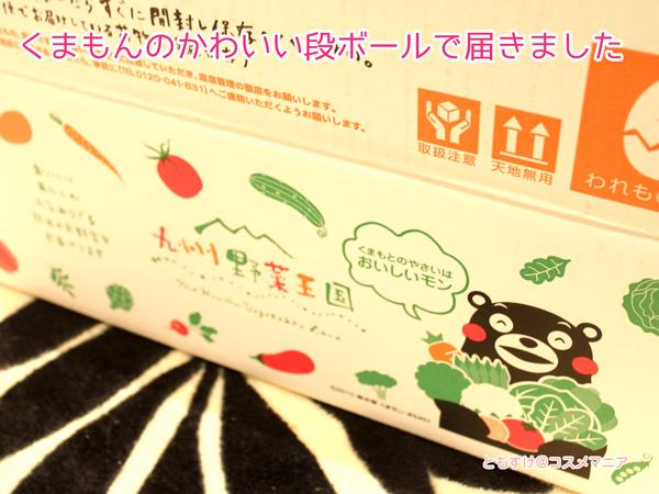 九州野菜王国届きました!