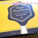 山田養蜂場のフォンダンハニーショコラ